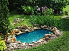 Придомовый пруд