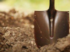 Органические удобрения и их виды